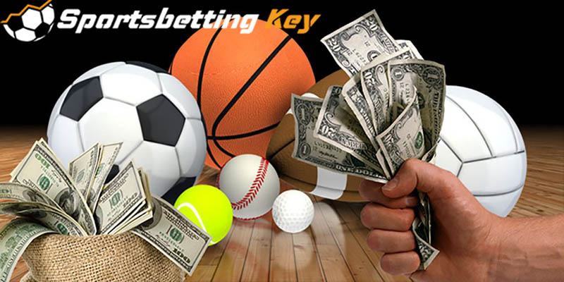 sports betting strategy for beginners