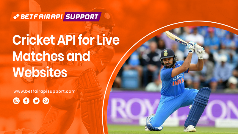 Cricket API for Live Matches and Websites