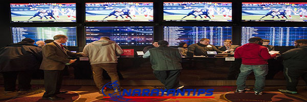 Best Cricket Betting Site In India