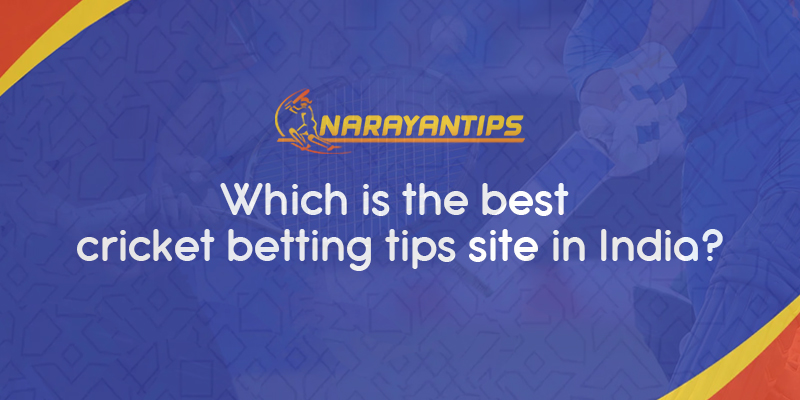 Which Is The Best Cricket Betting Tips Site In India?